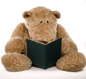 Teddybear reading a book Royalty Free Stock Photos