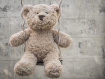 Teddybear su un'oscillazione Fotografie Stock Libere da Diritti