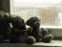 Teddybears on a rainy day. Lonely teddybears on a rainy day Royalty Free Stock Photography