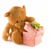 Teddybeer Royalty-vrije Stock Foto's