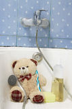 Teddybeer Stock Foto's