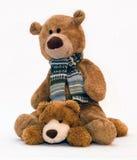 Teddybeer Stock Foto