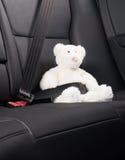 Teddybeer in de achterbank van een auto wordt vastgemaakt die Stock Fotografie