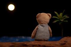 Teddybeer die alleen het bekijken de maan en het overzees zitten stock afbeeldingen