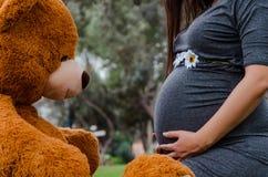 Teddybeer die de buik van het toekomstige mamma in een park bekijken royalty-vrije stock afbeelding