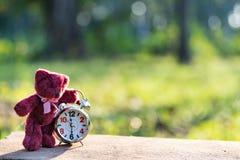 Teddybeer die eenzame en retro wekker in de tuin zitten stock foto