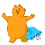 Teddybeer die met een hoofdkussen geeuwt Royalty-vrije Stock Foto's