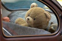 Teddybeer in een auto Royalty-vrije Stock Fotografie