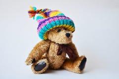 Teddybeer in een gebreide hoed Stock Afbeeldingen