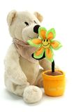 Teddybeer en bloem stock foto