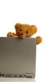 Teddybeer en laptop Stock Fotografie