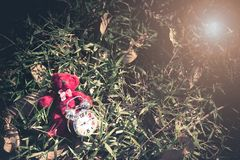Teddybeer en retro wekker gezet op gras in de tuin royalty-vrije stock afbeeldingen