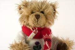 Teddybeer en thermometer Stock Afbeeldingen