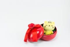 Teddybeer, gele roze teddy kat op rode blauwe giftdoos Stock Fotografie
