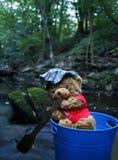 Teddybeer het roeien royalty-vrije stock foto's