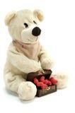 Teddybeer in liefde royalty-vrije stock fotografie