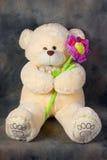 Teddybeer met bloem Stock Afbeelding