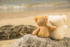 teddybeer op de beer Stock Afbeeldingen