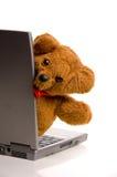 Teddybeer op laptop Stock Afbeeldingen