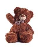 Teddybeer op wit Royalty-vrije Stock Afbeelding