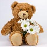 Teddybeer op witte achtergrond Stock Afbeelding