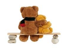 Teddybeer twee Royalty-vrije Stock Foto