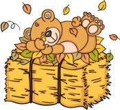 Teddybeerslaap met de herfstbladeren op hooi stock illustratie