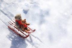 Teddyberen die in de de wintersneeuw sledding Royalty-vrije Stock Fotografie