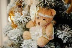 Teddybär betreffen den Weihnachtsbaum Stockfoto
