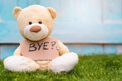 Teddybär, der Pappe mit Informationen Tschüss hält Stockfotos