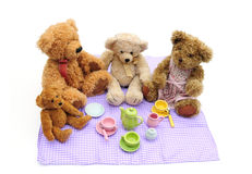 Teddybärpicknick Lizenzfreie Stockfotos