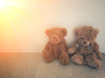 Teddys bear doll. Sit on the home floor Royalty Free Stock Photography