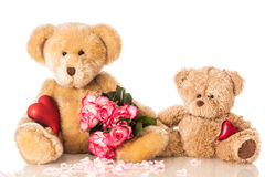 Teddys with heart and roses Stock Photography