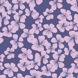 Teder de bloesem naadloos patroon van de sakurakers vector illustratie