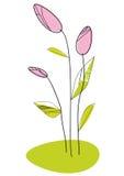 Tedere de lentebloemen Stock Foto's