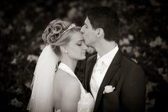 Tedere huwelijkskus Royalty-vrije Stock Foto