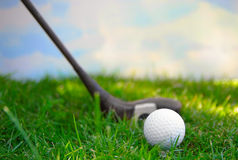 On the tee Royalty Free Stock Photo