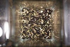 Tee Stockbilder