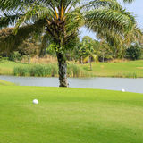 Tee box in the golf course. Beautiful tee box in the golf course Stock Photography