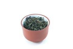 Tee-Cup Lizenzfreies Stockbild