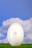 Tee'd da esfera de rugby acima na grama Foto de Stock Royalty Free