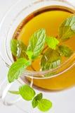 Tee der frischen Minze in der Glasschale Lizenzfreie Stockfotografie