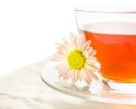 Tee in der Schale mit Chrysantheme Lizenzfreies Stockfoto
