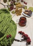 Tee im Herbstgarten Stockbilder