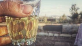 Tee im Wald Lizenzfreie Stockfotografie