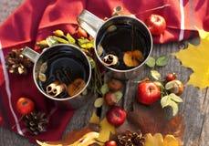 Tee mit Apfel und Gewürzen Stockfotos