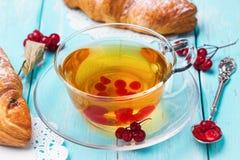 Tee mit Beeren einer Guelderrose und der frischen Hörnchen Stockfotografie
