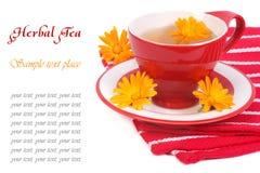 Tee mit Calendula auf einer roten Serviette lokalisiert Stockfotografie