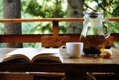 Tee mit einem Buch in der Natur lizenzfreie stockfotos