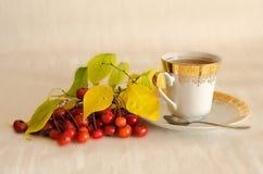 Tee mit einem Weißdorn Lizenzfreie Stockbilder